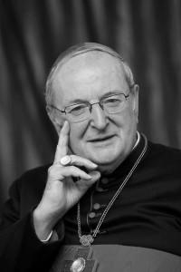 Buch zum Tod von Kardinal Meisner
