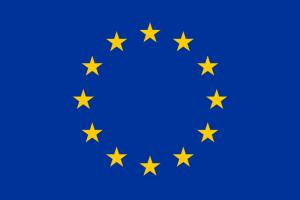 Europawahl am 7. Juni