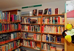 Jede Menge Bücher warten in der KÖB in Noithausen. Foto: TZ