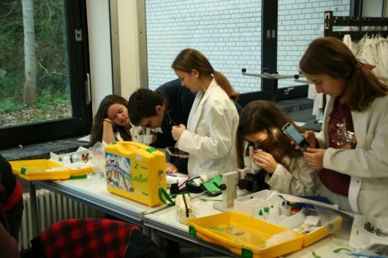 Im Labor des Norbert-Gymnasiums in Knechtsteden haben auch Mädchen Freude an den MINT-Fächern.