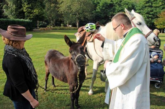 Auch Esel und Pferde werden von Pater Felix Rehbock am Nikolauskloster gesegnet.