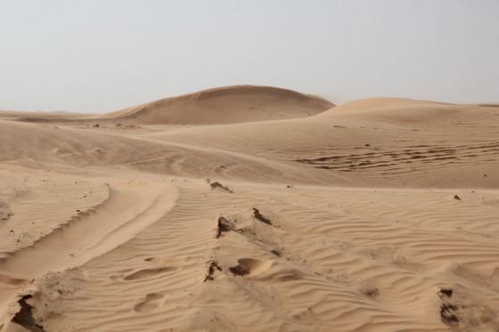 Die Leere der Wüste erfahren: Dieses Angebot macht die Gemeinde St. Michael. Foto: TZ