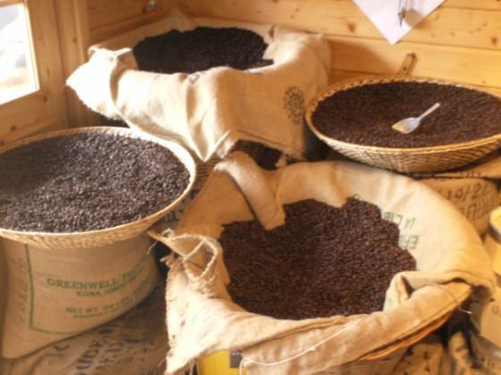 Coffee-Day 2009 in Neuss Stadtwette gewonnen